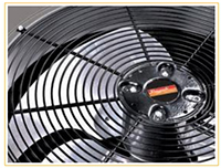 raypak heat pump fan